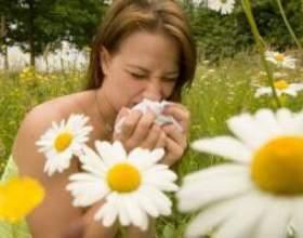 Алергія влітку у дітей, у дорослих, лікування фото