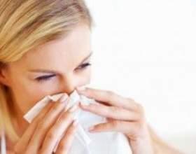 Алергія на кліщів, як виявляється? Як лікувати? фото