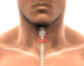 Аналіз крові на гормони щитовидної залози, розшифровка фото