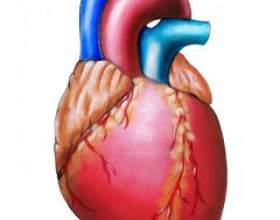 Аритмія серця фото