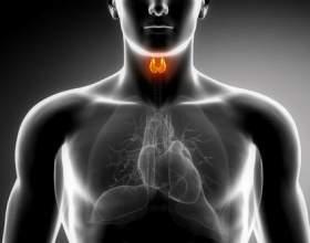 Аутоімунний тиреоїдит щитовидної залози що це таке фото