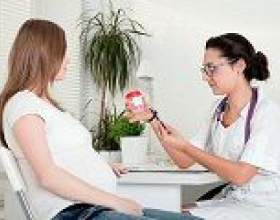 Білок при вагітності: норма і відхилення фото