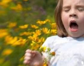 Бережіть ніс дитини від полінозу фото