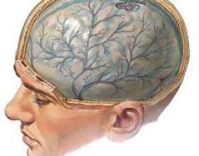 Черепно-мозкова травма фото