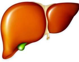 Чистка печінки алохолом фото