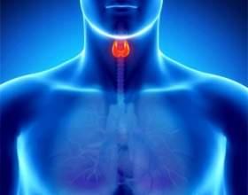 Що значить підвищений тиреотропний гормон? фото