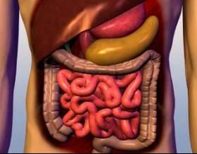 Дифузні зміни підшлункової залози фото