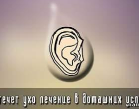 Якщо тече вухо лікування в домашніх умовах фото