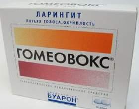 Гомеовокс фото