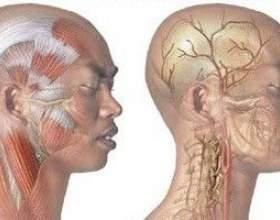 Через що болить череп голови? фото