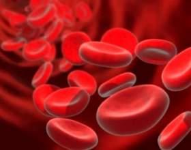 Як підвищити гемоглобін в кроⳠфото