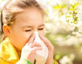 Як дізнатися, на що алергія у дитини? фото