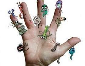 Які мікроби живуть на руках фото