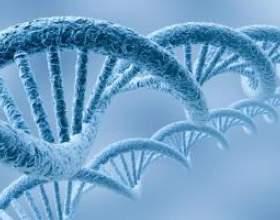 Лікування цитомегаловірусу - сумніваєтеся? Перевіртеся на цитомегаловірус! фото