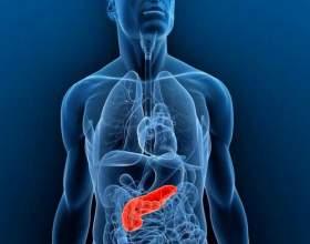Лікування і профілактика підшлункової залози народними засобами фото