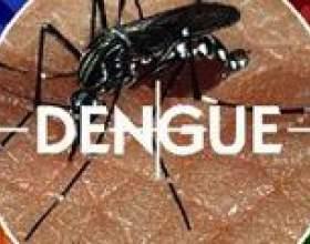 Лихоманка денге: причини, симптоми, лікування фото
