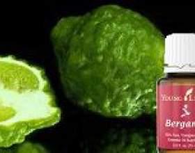 Масло бергамота: застосування, властивості фото