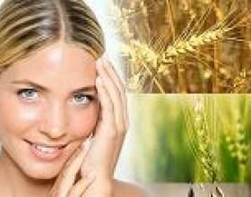 Масло зародків пшениці для обличчя, для волосся, застосування фото
