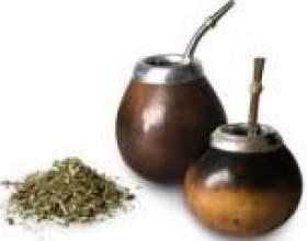 Мате (чай) - корисні властивості, застосування і протипоказання фото
