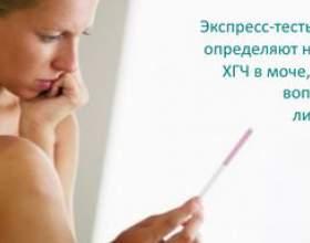 Чи може тест показати позаматкову вагітність фото