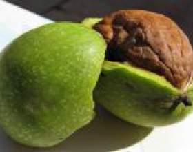 Настоянка зеленого волоського горіха: застосування фото