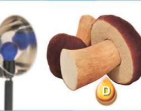 Опромінені гриби - цінне джерело вітаміну d! фото