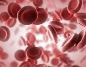 Знижений гематокрит, причини і лікування низького гематокриту фото