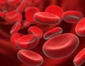 Підвищення кількості лейкоцитів в крові: лейкоцитоз фото