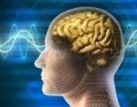 Розкрито механізм впливу альцгеймера на мозок людини фото