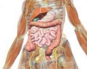 Симптоми гастродуоденита фото