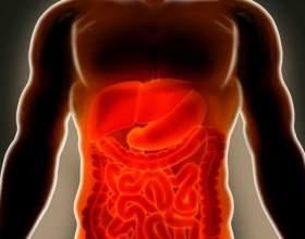 Симптоми і лікування ішемії кишечника фото
