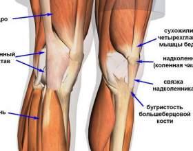 Тейпірованіе колінного суглоба фото