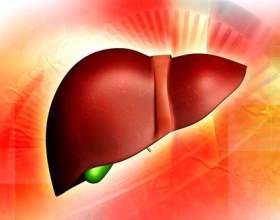 Види цирозу печінки фото
