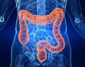 Запалення кишечника: симптоми і лікування фото