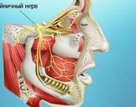Запалення трійчастого нерва: симптоми і лікування фото