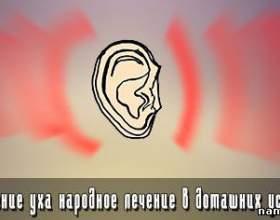 Запалення вуха народне лікування в домашніх умовах фото