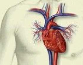 Відновлення тканин серця після інфаркту міокарда фото