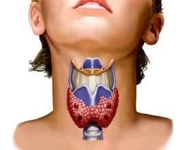 Захворювання щитовидної залози у жінок фото